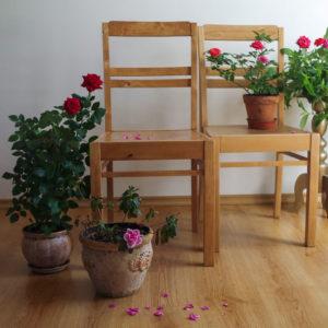 Renoveeritud puidust söögitoolid - Atmosfäär mööbel